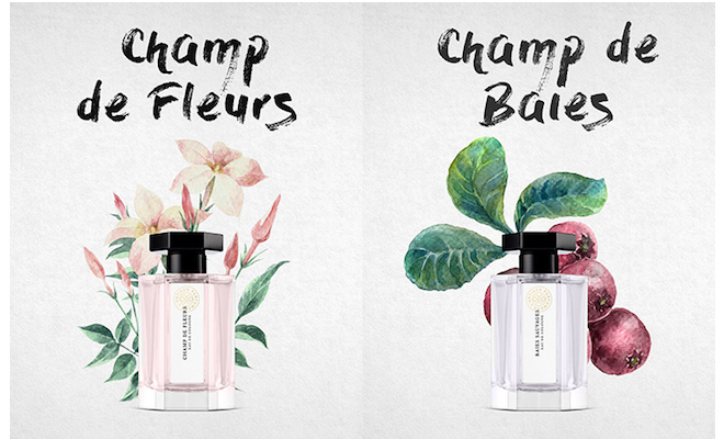 lartisanparfumeur-champ1