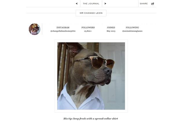 mrporter_doggystyle03.jpg