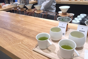 greenbrewing-tokyosaryo10
