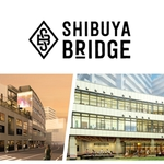 shibuyabridge-outline
