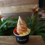 banan-hawaii_5