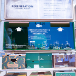 regeneration-7